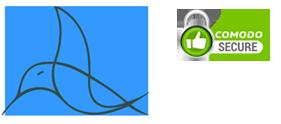 logo-vidanjari-brasov-secure